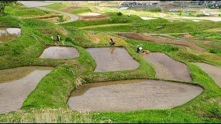 信州の里山に新緑と田植えの季節・4k撮影