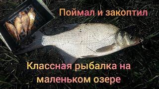 Классная рыбалка на маленьком озере ПОЙМАЛ РЫБУ И ЗАКОПТИЛ