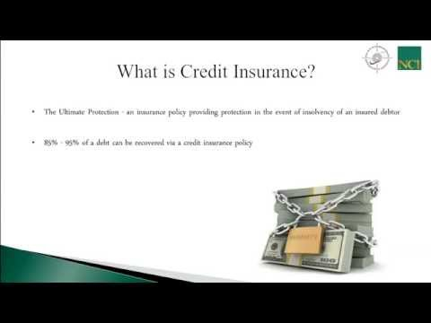 Managing Trade Credit