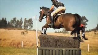 Клип конный спорт (Кончай истерику)