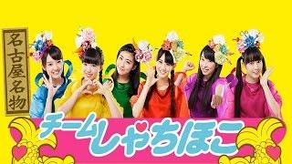 チームしゃちほこ - んだって!!(乙女祭り2015) / Team Syachihoko – N...