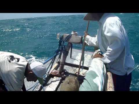 Fortaleze Pescadores (2) (men only version)