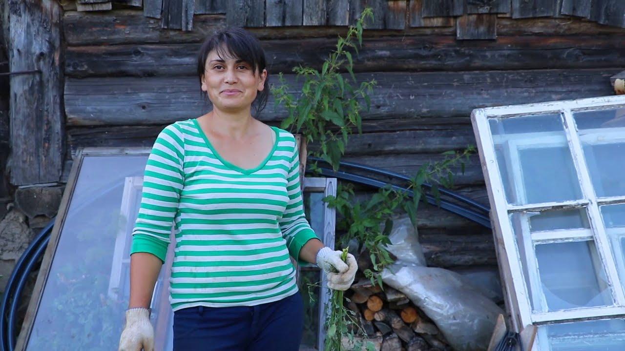 Армирование фундамента и урожай чеснока с луком
