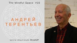 Медитация в буддизме и научный взгляд  Андрей Терентьев
