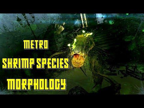 Metro Last Light Shrimp Variance   Shrimp Males, Females and Bog Shrimp Boss Explained   Metro Lore