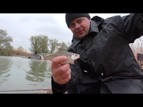 На озере. Майская рыбалка на поплавочную удочку