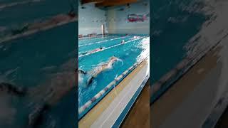 Подводное плавание/плавание/Щёлково/бассейн Нептун/спорт/плавание в ластах/finswimming