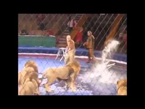 трагедия в челябинском цирке