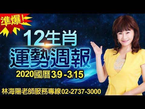 林海陽 準爆!12生肖運勢週報 3/9-3/15