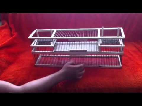 vogelfalle test doovi. Black Bedroom Furniture Sets. Home Design Ideas