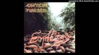 Canticum Funebris - (If I had) Wings (viola)