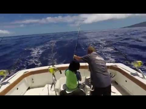 Hawaii Blue Fin Marlin Fishing In Maui
