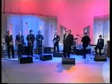 Gangsters - Gangster Ska (Live on TV 1999) Irish Ska