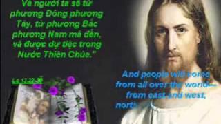 HÃY GẮNG MÀ VÀO BẰNG CỬA HẸP (Luc 13, 22-30)_ CN XXI-C
