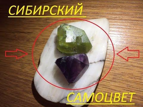 Как найти драгоценные камни, среди обычных булыжников