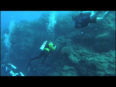 Scuba diving Barge Harbor North (2016.04.21)