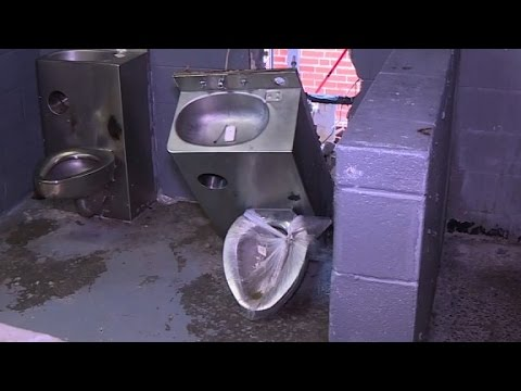 Inmates use broken toilet to escape