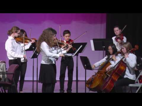 Tappan Middle School Chamber Orchestra at AAPS BOE Meeting 3/29/17