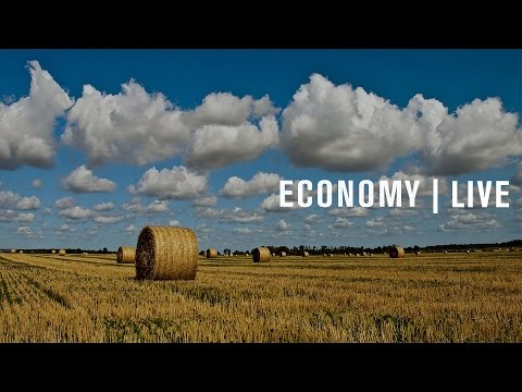 The 2014 Farm Bill: A midterm review