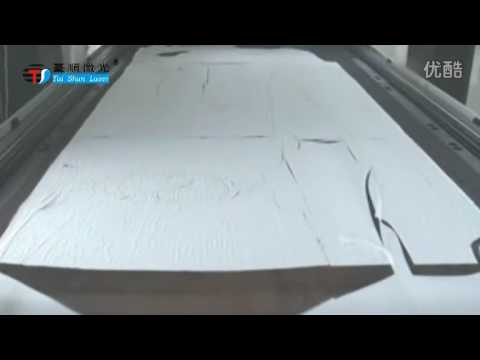 large format fabric Laser Cutting Machine Tsc320600ld for garment textile cutting