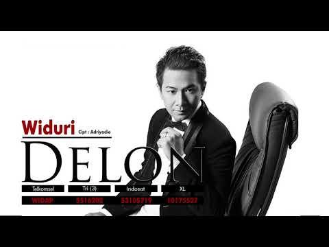 Delon - Widuri (Official Audio Video)