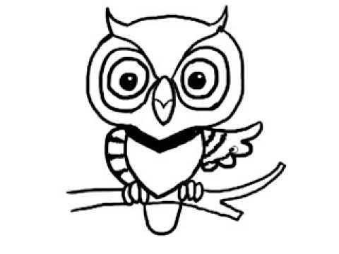 วาดรูปการ์ตูน นกฮูก นกเค้าแมว