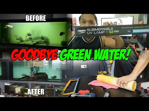 Green Water Problem - Solved