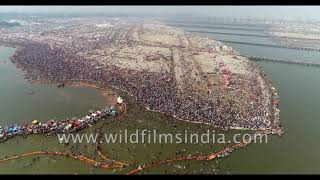 Best of India, best of wildfilmsindia MUST SEE Cannes 4K showreel