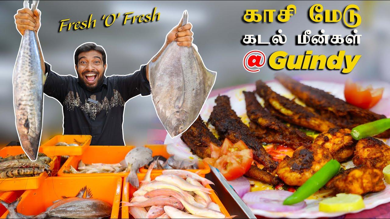 சென்னையின்  நடுவில் Fresh  கடல் மீன்கள் | Bilal Fish @ Guindy | Prawn And Fish Fry Recipe by Jabbar
