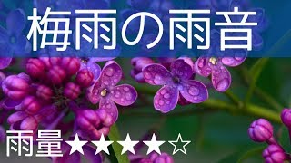 【癒しの音・立体音響】「梅雨の雨音(雨量★★★★☆)」雨のみ-2時間-!作業 睡眠 読書 瞑想 ヨガ 勉強用BGM thumbnail