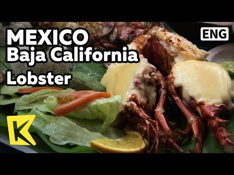 【K】Mexico Travel-Baja California[멕시코 여행-바하칼리포르니아]치즈 얹은 랍스터 요리/Lobster/Sea Food/Restaurant