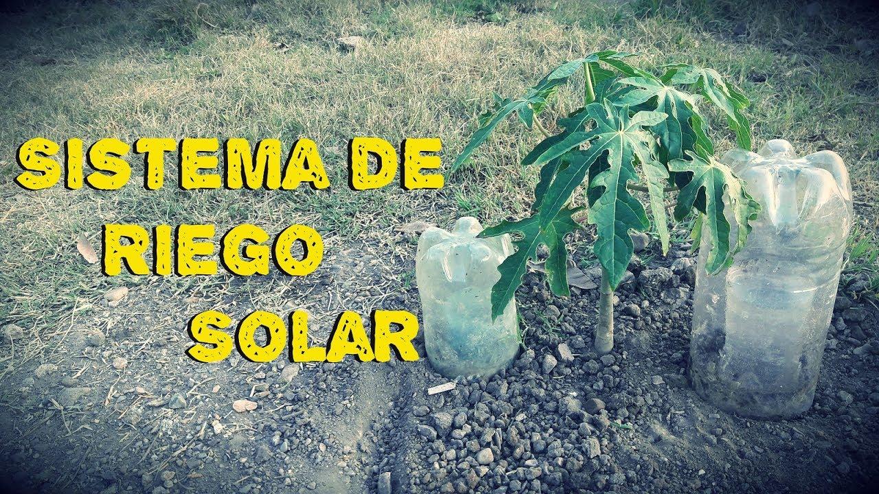 Como hacer un sistema de riego solar riego a goteo youtube - Como solar un suelo ...