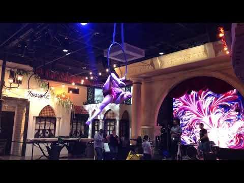 Aerial Lyra at Plaza Mariachi Music City!