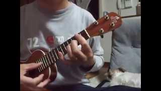 大好きな佐野元春の曲をウクレレで弾いてみました。 後ろでは、はなちゃ...