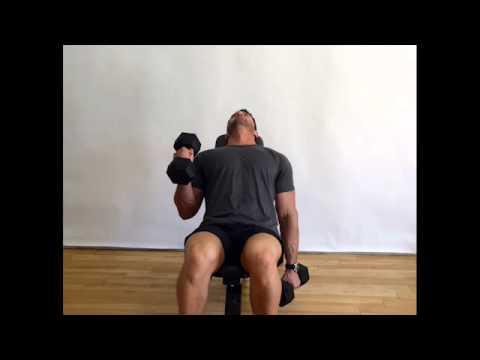 Bicep Alternating Hammer Curls (Dumbbells) - Incline Bench
