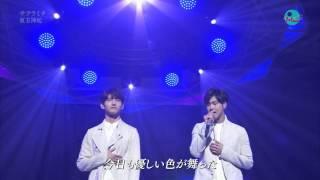 [150302] TVXQ - Sakuramichi @ NHK Music Japan