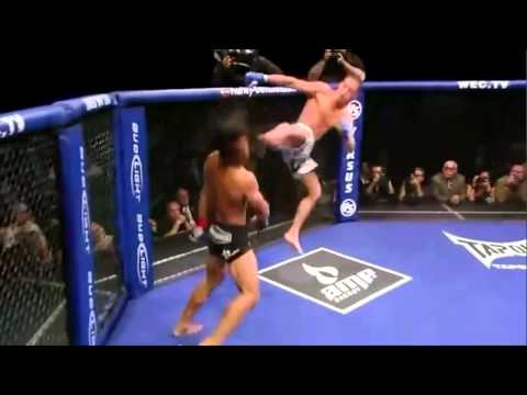 flying kick off the cage - crazy mma knockout