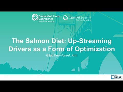 The Salmon Diet: Up-Streaming Drivers as a Form of Optimization - Gilad Ben-Yossef, Arm