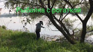 РЫБАЛКА С РОГАТКОЙ. SLINGSHOT FISHING