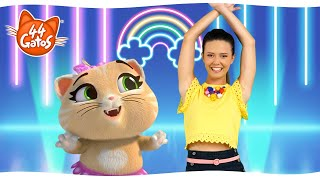 """44 Gatos   Latinoamérica   Meow Dance Lesson   """"Un concierto especial"""""""