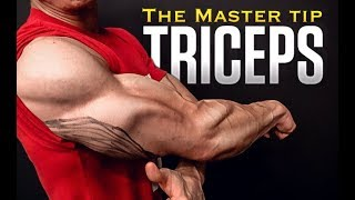 "The Triceps Workout ""Master Tip"" (EVERY EXERCISE!)"
