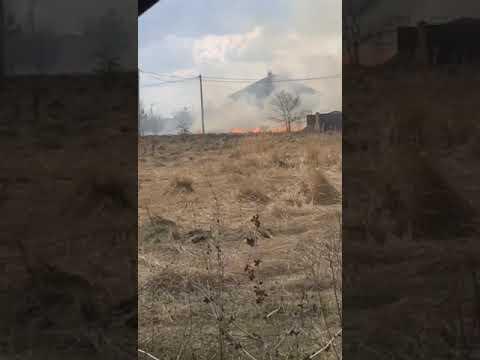 Ландштафтный пожар в Новой Усмани