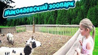 Зоопарк / Николаевский зоопарк / Редкие животные / zoo