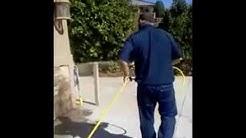 Pest Control - Power Spraying || America's Best Pest Control in Cedar City