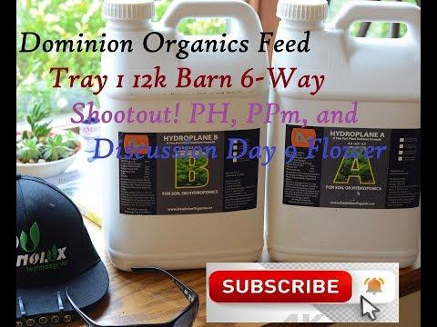 12K 6-Way Shootout, Day 9, Tray 1 - Dominion Organics Ppm - PH 1st Feed