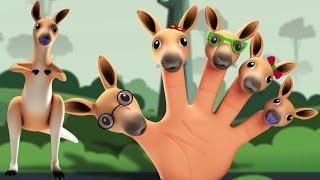 Känguru Finger Familie   Fingerreim   Kinderreime für Kinder   Kids Music   Kangaroo Finger Family