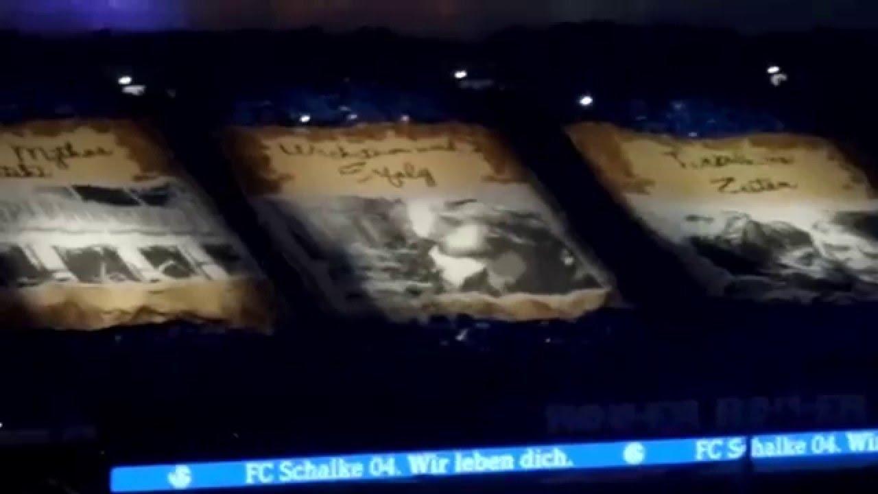 Schalke Choreographie