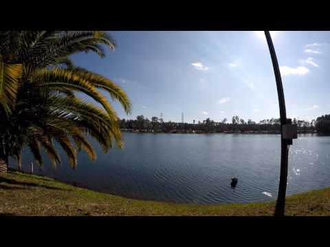 Stroll Thru Flamingo Lake RV Resort