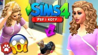 JESTEM WETERYNARZEM!! The Sims 4 Psy i Koty #2