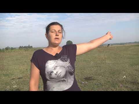 Телеканал Ексклюзив: Чужі на своїй землі: на Теофіпольщині селяни залишились без пасовища